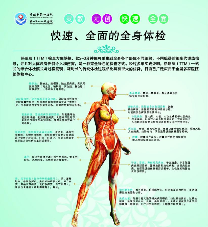 肝胆胰脾双肾 甲状腺 子宫附件 乳腺 颈动脉  已婚女,妇科检查 tct