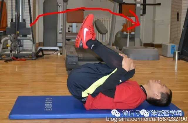 腰部肌肉锻炼图解_医护网