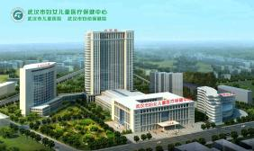 武汉儿童医院武汉市妇幼保健院