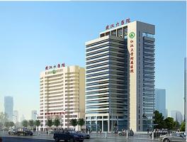 武汉市第六医院邮编_武汉市第六医院网上预约挂号,武汉市第六医院电话预约挂号_健康