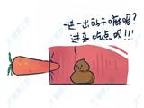 医生爆料:我遇到最奇葩的事,是从病人菊花里取出一根?#28814;?..